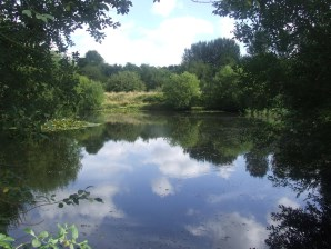 Property for Auction in East Anglia - Aslacton Lakes Fishery, Grays Lane, Aslacton, Norfolk, NR16 1TB