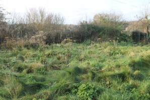 Property for Auction in East Anglia - Plot off Malthouse Lane, Guist, Norfolk, NR20 5NT