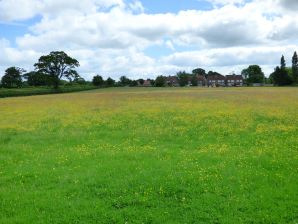 Property for Auction in Dorset - Land at the Causeway, Hazelbury Bryan, Sturminster Newton, Dorset, DT10 2BH