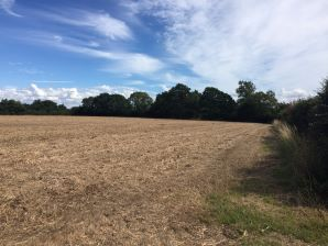 Property for Auction in Dorset - Land at Broadmoor Lane, Horsington, Templecombe, Somerset, BA8 0EE