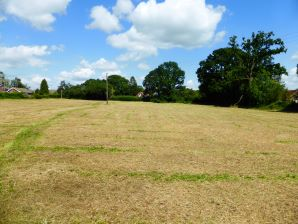 Property for Auction in Dorset - Land at Knights Lane, All Saints, Axminster, Devon, EX13 7LS